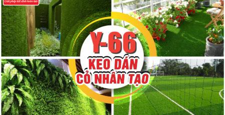 Keo dán Sân Cỏ Nhân Tạo - Keo Rồng Y66